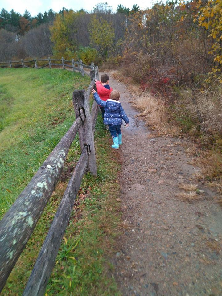 the nature trail and cranberry bog 16