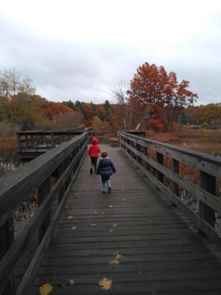 the nature trail and cranberry bog 21