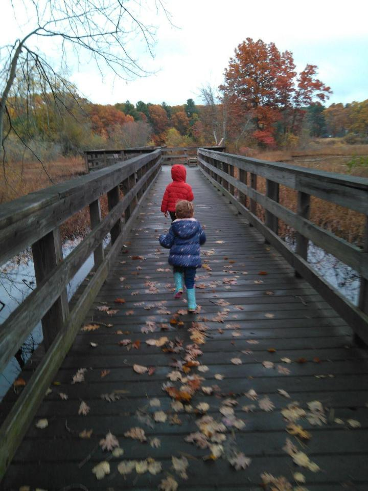 the nature trail and cranberry bog 22